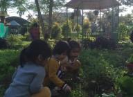 thăm quan vườn rau bé 2( t. hằng)